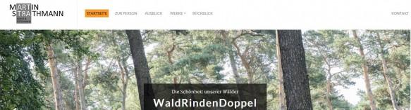 Snapshot meiner neuen Homepage